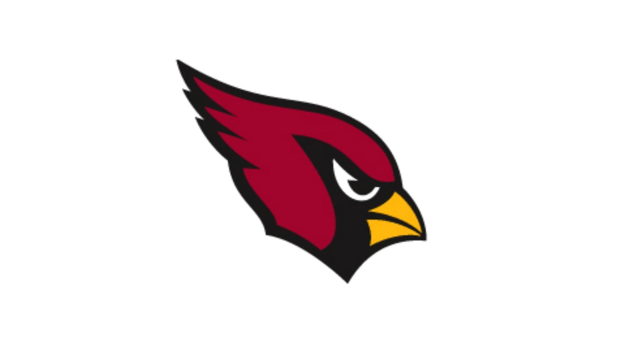【チーム紹介】アリゾナ・カーディナルス Arizona Cardinals